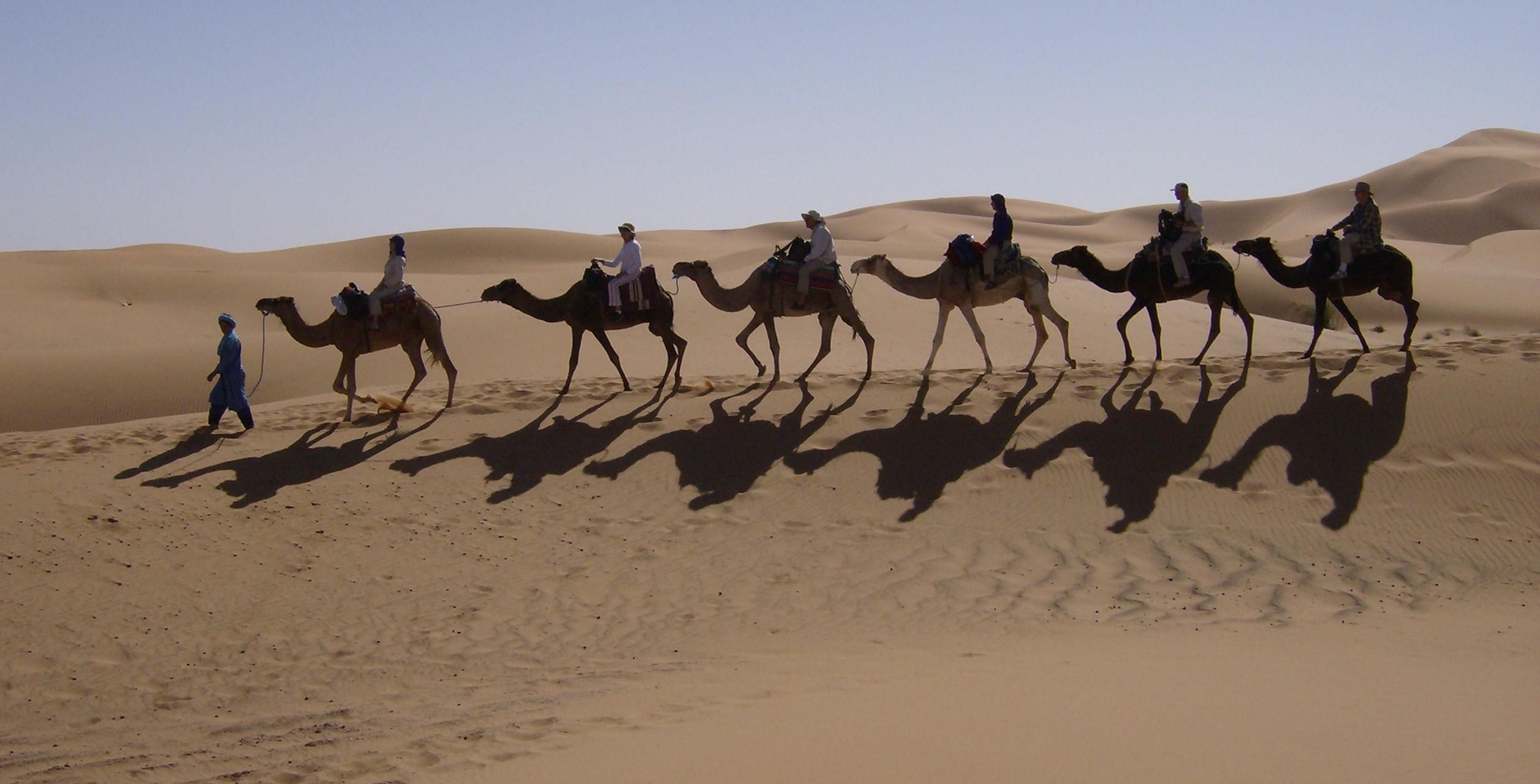 kamelenkaravaan bij Erg Chebbi