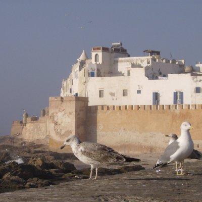 Voorvertoning blik op Essaouira