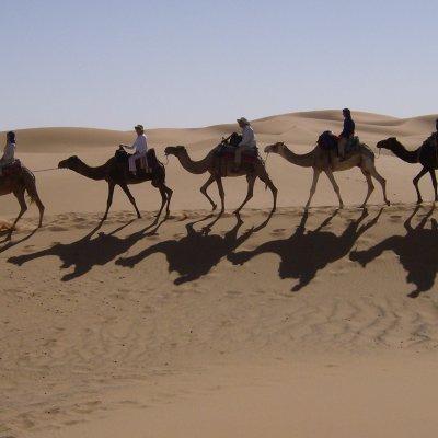 Voorvertoning kamelenkaravaan bij Erg Chebbi