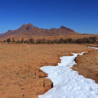 Voorvertoning Sneeuw in de Sahara