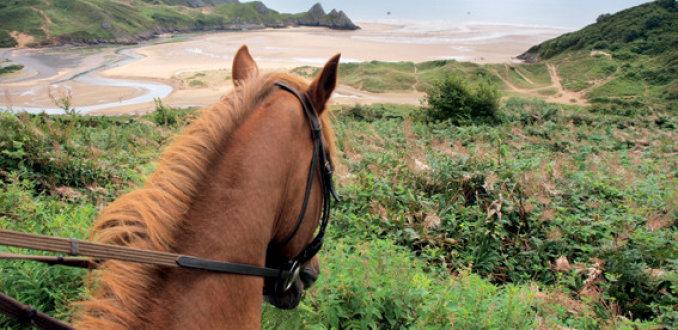 Op survivaltocht in Wales