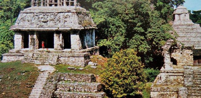 Blog van de week: Pech in Palenque