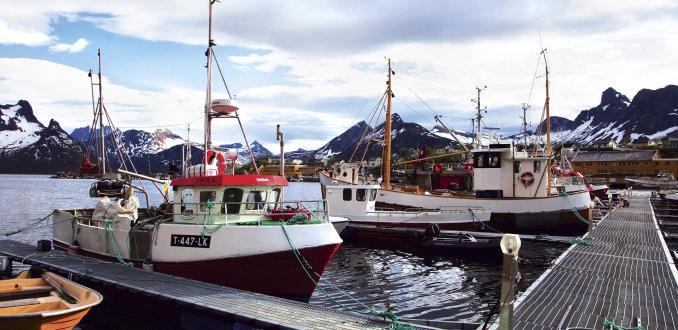 ## Noord-Noorwegen: De leukste activiteiten