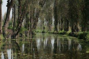 Kanalen door de drijvende tuinen van Mexico City