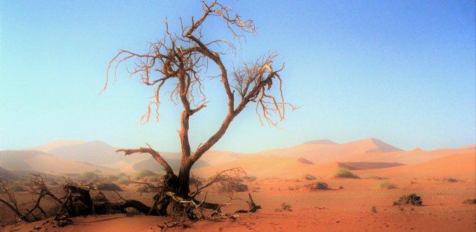 Zandstorm in Sossusvlei