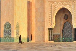 Werken in Hassan II