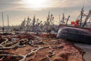 Netten boeten in de haven van Essaouira