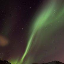 Noorderlicht nabij Tromso