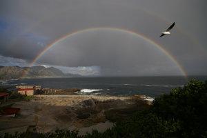 Regenbogen bij Hermanus