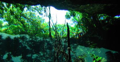 Onderwater in een Cenote