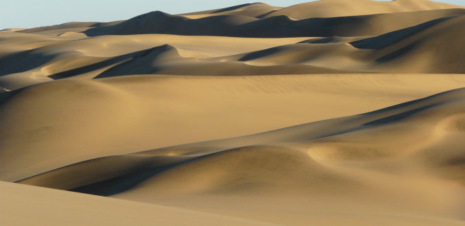Golvende zandduinen