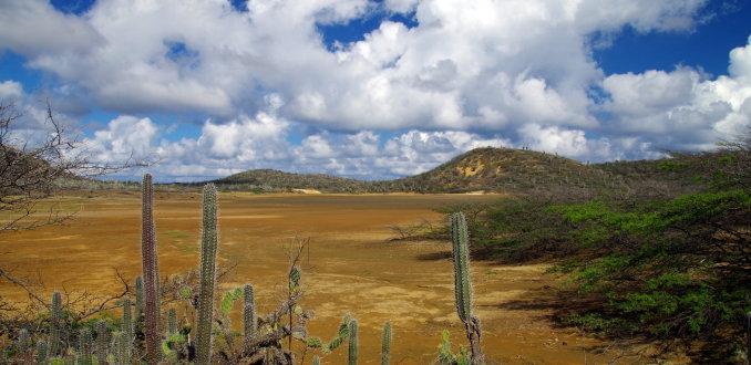 Bonaire: ruiger dan je denkt