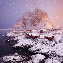 Sneeuwbui bij zonsopkomst op de Lofoten