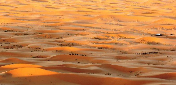 Schepen van de woestijn
