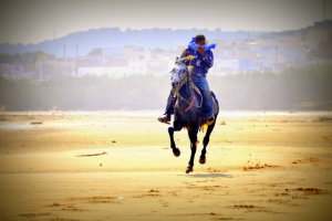 in galop