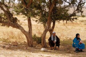Onder de Argan boom