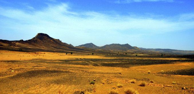 grindwoestijn