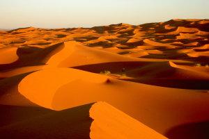 Sahara woestijn