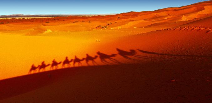 Voor het eerst in de Sahara