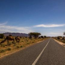 Mooi rijden in Marokko