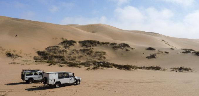 Safari door de woestijn