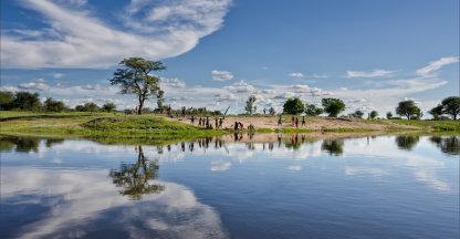 Okavango namiddag
