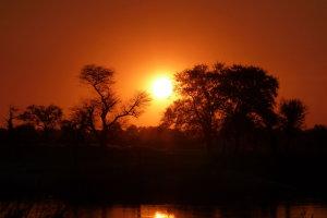 Zonsondergang aan de oever van de Okavango