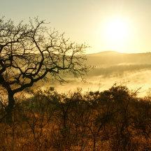 KwaZoeloe-Natal