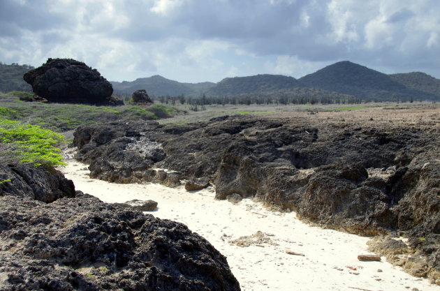 Het tsunami-verleden van Bonaire