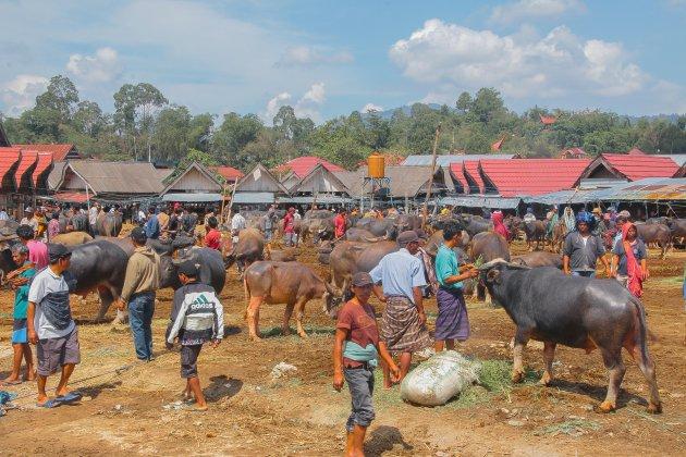 Buffelmarkt