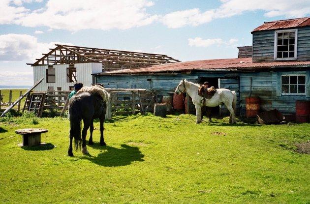 Op avontuur in Chileens Vuurland
