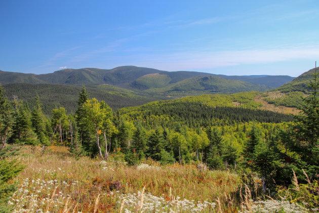 Parc National de la Gaspesie