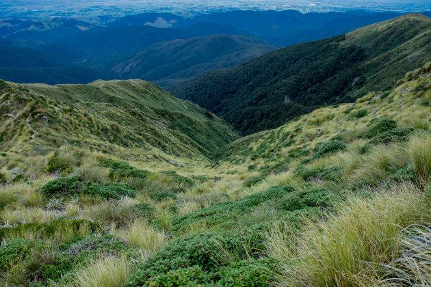 'Trektocht in Nieuw-Zeeland'