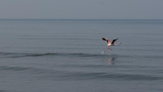 Over water lopen