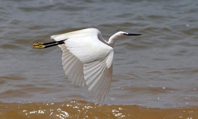 Ontspannen aan het Victoriameer