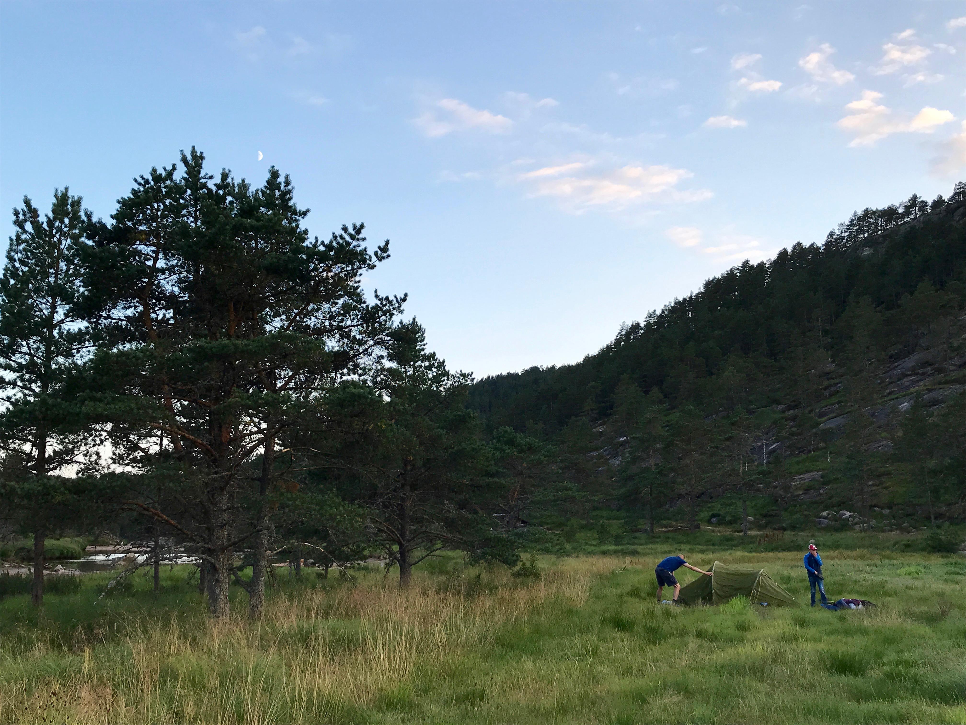 Wildkamperen in Noorwegen