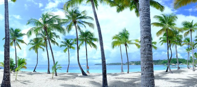 La Caravelle beach in Guadeloupe