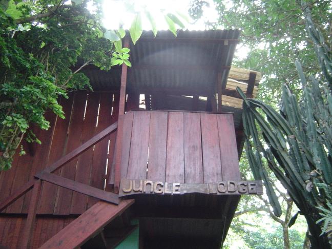 Jungle Lodge @ Rancho Burica