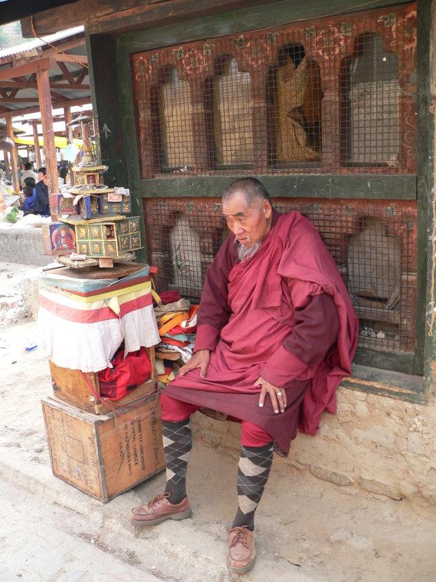 Lama at the market