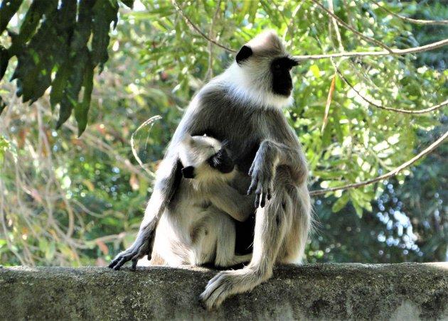 Moeder met kind.