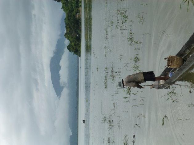 Lak Lake Vietnam