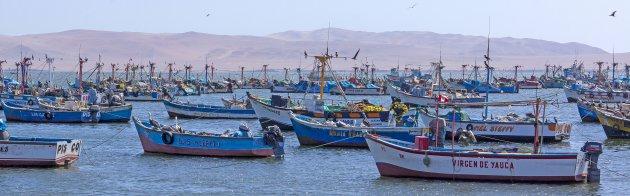 Vissersbootjes bij Paracas