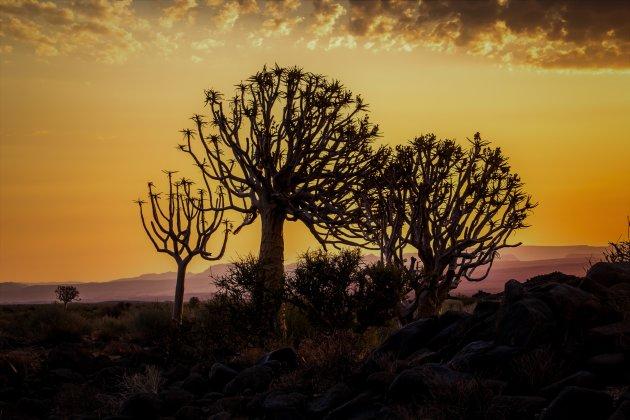 De zonsondergang in Namibië