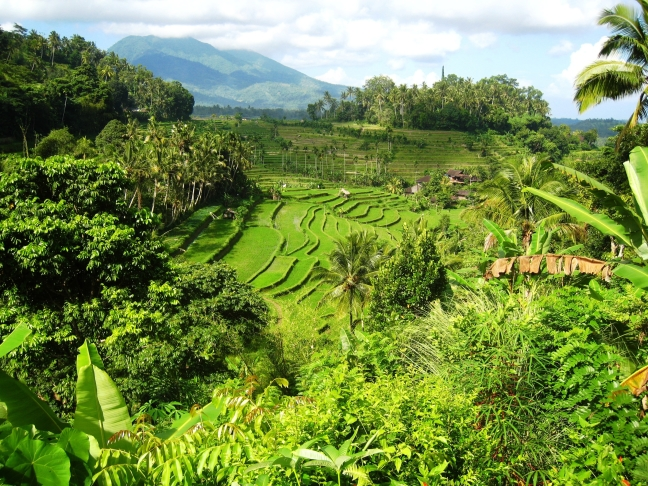 Uitzicht Batur Indah Homestay