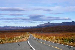 Denali Highway in herfstkleuren