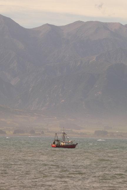 Vissersbootjes voor de kust van Kaikoura