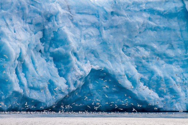 Varen rond Spitsbergen, een van Europa's laatste wildernissen.
