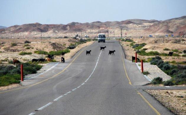 Onderweg in Oman