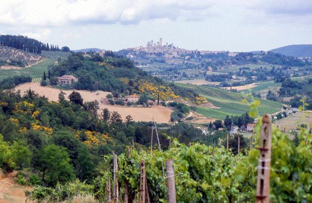 De glooiende Toscaanse heuvels
