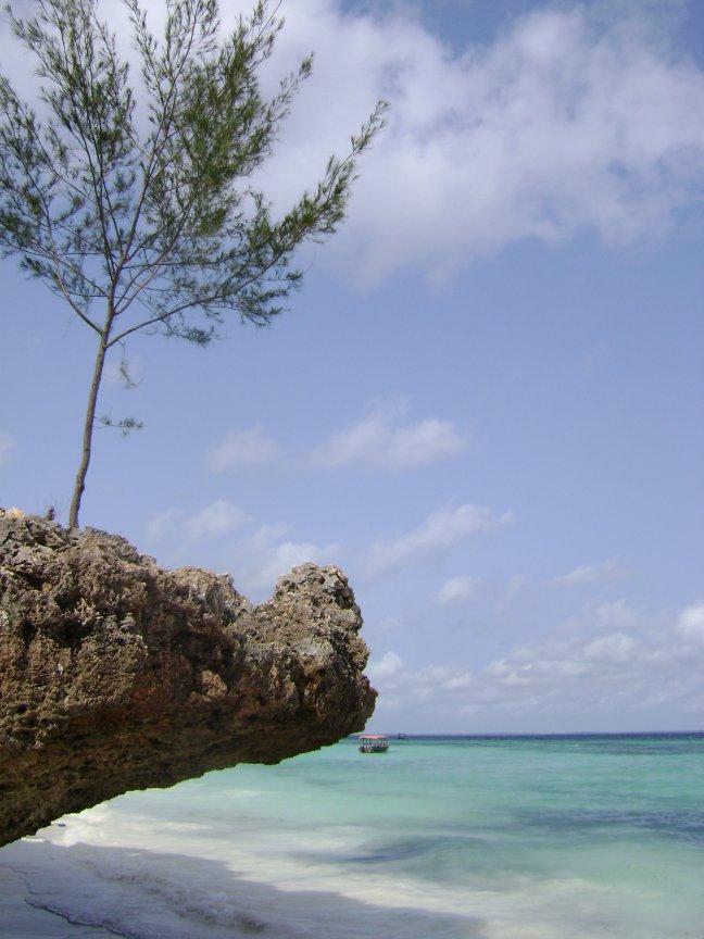 Tropisch Zanzibar